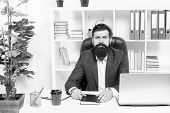 Lawyer Agency. Man Bearded Hipster Boss Sit In Leather Armchair Office Interior. Boss At Workplace.  poster