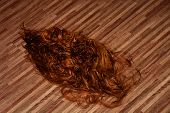 Cut Long Red Hair On The Floor In A Hairdressing Salon, Red Cutted Hair In A Beauty Salon poster