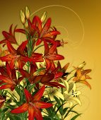 stock photo of asiatic lily  - a bouquet of lilies in red and yellow colors - JPG
