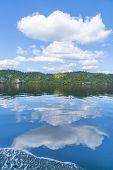 Reflected Lake Edge And White Clouds On Idyllic Lake Rotoiti Near Rotorua New Zealand. poster