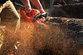 stock photo of man chainsaw  - Sawdust flies as a man cuts a fallen tree into logs - JPG