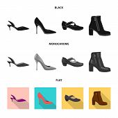 Isolated Object Of Footwear And Woman Icon. Set Of Footwear And Foot Stock Symbol For Web. poster