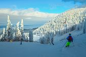 Admirable Snow Covered Trees And Winter Ski Resort With Fast Cable Cars, Gondolas. Active Sporty Ski poster