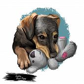 Serbian Hound Pet Digital Art, Watercolor Hand Drawn Poritair Of Canine. Domestic Animal From Serbia poster