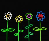 Stick Flowers poster