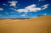 stock photo of mesquite  - Mesquite Dunes desert in Death Valley National Park California - JPG