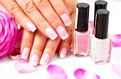 stock photo of fingernail  - Manicure and Hands Spa - JPG