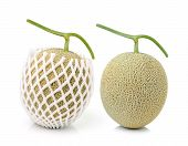 foto of muskmelon  - fresh melon isolated on  - JPG