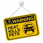 stock photo of leaving  - Warning of leaving a dog in parked cars A yellow and black warning sign with the words HEAT KILLS PETS isolated on a white background - JPG
