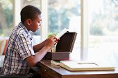 picture of keepsake  - Boy Looking At Document In Keepsake Box On Desk - JPG