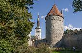 picture of olaf  - Tallinn Medieval Town - JPG