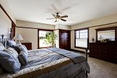 picture of master bedroom  - Master bedroom with iron frame bed and green tree in the corner - JPG