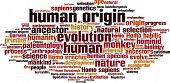 pic of habilis  - Human Origin Word Cloud Concept - JPG