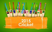 pic of bat  - illustration of cricket bat of different participating countries - JPG