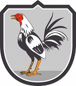 stock photo of cockerels  - Illustration of a rooster cockerel standing facing side set inside crest shield done in retro style on isolated background - JPG