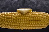 pic of corn cob close-up  - A close up photograph of steaming hot corn on the cob with melting butter - JPG