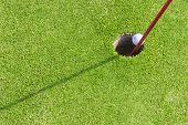pic of miniature golf  - Close - JPG