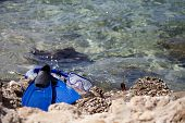 stock photo of flipper  - Mask and flippers on a rock beach  - JPG