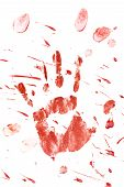 picture of gruesome  - Blood splatter and fingerprints isolated on a white background - JPG