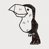 picture of toucan  - Toucan Doodle - JPG