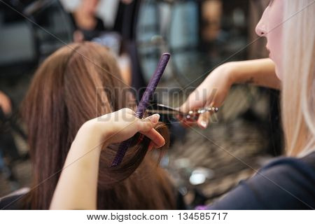 poster of Beautiful hairdresser doing hairstyle to her client standing at a professional hairdressing salon