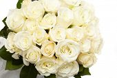 stock photo of white roses  - White roses - JPG