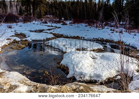 Late Spring Thaw Clearwater County