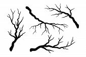 Tree Branch Without Leaves Silhouettes Set  Isolated On White, Bare Branches Vector Illustrations poster