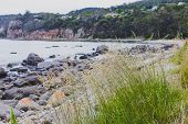 Deserted Beach In Hobart, Tasmania With Rocks And Bush  In The Foreground On An Overcast Day With Sl poster