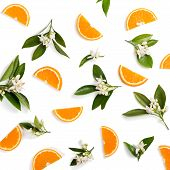 Top View Of Blossoming Branches Of Orange Tree With Leaves And Sliced Orange Fruit, Isolated On Whit poster
