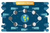 Moon Cycle Vector Illustration Diagram Poster With All Moon Phases From New To Full Moon And Waning, poster
