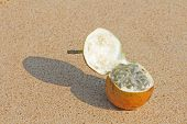 One Orange Open Passion Fruit With Seeds. Passion Fruit Closeup On The Beach, On The Sand And On The poster