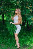 Portrait Of A Charming Blond Woman Wearing Beautiful White Dress Standing Next To Rowan Tree. poster