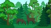 Cartoon Deer In Forest Landscape. Deers In Woods, Forest Field And Green Trees. Wildlife Animals, Do poster