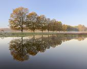 Row Of Autumn Trees Reflecting In A Lake, Tranquil Autumn Image, Blue And Orange, Reflection, Mist poster