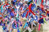 Many glass mascots - evil eye charms hang from a tree in Pigeon Valley, Cappadocia, Turkey poster