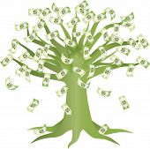 Green Money Tree Illustration