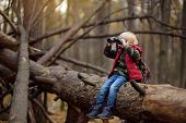 Little Boy Scout With Binoculars During Hiking In Autumn Forest. Child Is Sitting On Large Fallen Tr poster