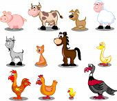 image of turkey-hen  - vector illustration of a 12 domestic animals - JPG
