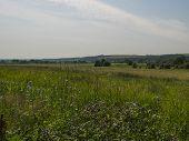 Russian Summer Vast Field Beautiful Landscape Shot poster