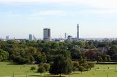 picture of primrose  - A view of the London skyline from Primrose Hill on a bright sunny day - JPG