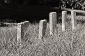 foto of headstones  - A Row of Unmarked Small Child Headstones in Black and White - JPG
