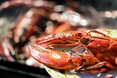 stock photo of crustacean  - Delicious lobster in dish grilled outside ready to eat - JPG