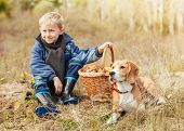 stock photo of edible mushroom  - Boy with his pet resting after mushroom picking