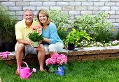 Happy senior couple with flowers in the garden.