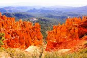 picture of hoodoo  - Vibrant orange hoodoos of Bryce Canyon National Park - JPG