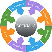 foto of bloody mary  - Cocktails Word Circles Concept with great terms such as martini bloody mary mojito and more - JPG
