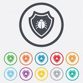 pic of shield-bug  - Shield sign icon - JPG