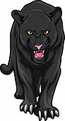 stock photo of panther  - Panther Editable  - JPG