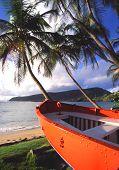 Постер, плакат: Оранжевый лодка кокосовых пальм